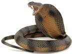 cobra-snake, ular, snakes, snake pictures, plastic snake